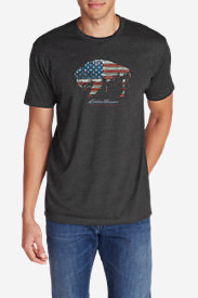 Men's Graphic T-Shirt - American Bison in Gray