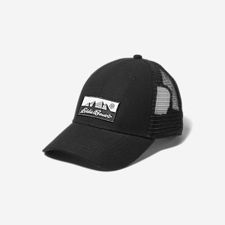 Graphic Cap - Eddie Bauer Logo in Gray