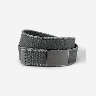 Men's Web Plaque Belt in Gray