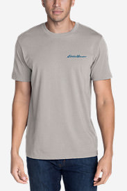 Men's Graphic T-Shirt - Denali National Park in Gray