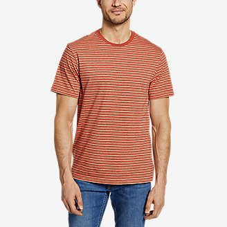 Men's Legend Wash Pro Short-Sleeve T-Shirt - Stripe in Brown