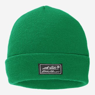 Thistle Beanie in Green