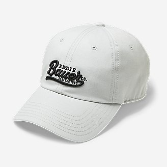 Dad Hat in Gray