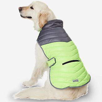 Snowfield Performance Pet Vest in Gray