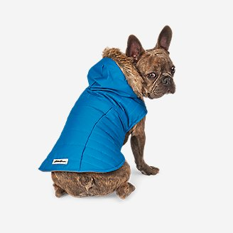 Chinook Hooded Pet Parka in Blue
