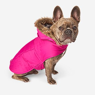 Chinook Hooded Pet Parka in Pink