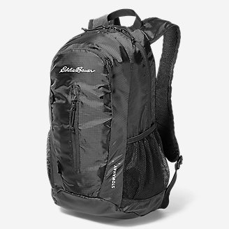 Stowaway Packable 20L Daypack in Gray