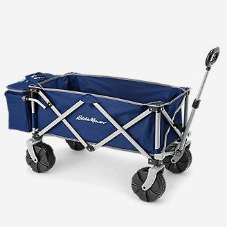 Quad Folding Wagon w/ Cooler in Blue