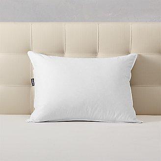 Premium Down Pillow in White